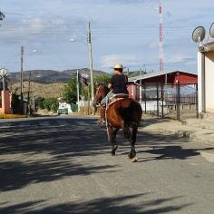 El Sauzal, Cauquenes